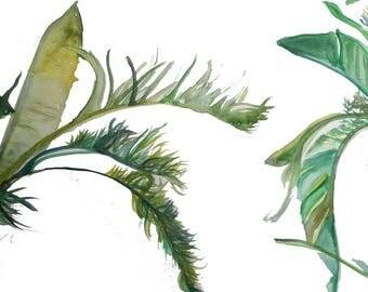 Tropical Leaf Watercolour print