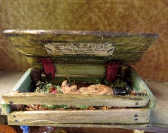 Mummified Gnome Specimen for Cabinet of Curiosities Dollhouse Miniature
