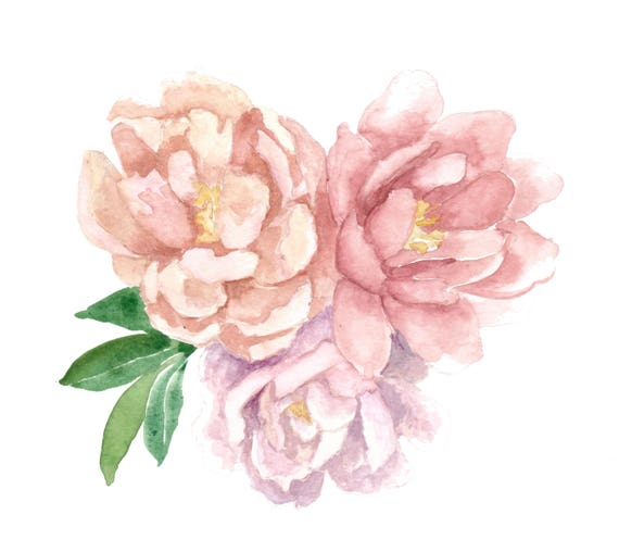 Original 7.5x8 inch Three Peonies Watercolor Painting