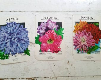 vintage seed packets ~art ~ craft ~ garden ~ dahlia petunia aster