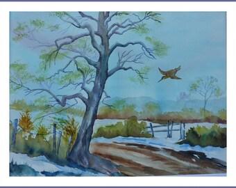 Watercolor - snipe flight