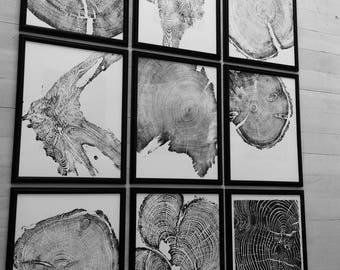 Set of 9, Tree ring art, Nature art, Tree ring prints, Tree art, Tree rings, tree stump, wall art set, 16x20, Framed art,Linton Art,Tree Art