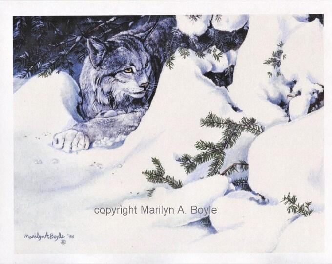 PRINT=CANADA LYNX; 8 X 10 Inch on card stock, hand enhanced, wall art, Canadian art, winter,