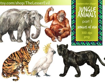 Jungle Animals Clipart, Digital Watercolor Tropical Animals of Asia Clip Art, Hand-painted Realistic Stock Illustration, Commercial use