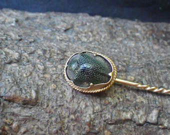 Antique 15ct Yellow Gold Real Scarab Beetle Cravat Stick Pin