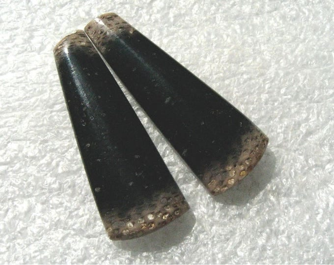 Matched pair of designer cut Petrified Palm Wood cabochons