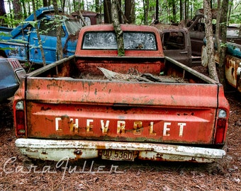 1967 Chevy C10 Truck in the Woods with a Tree growing between cab & bed Photograph
