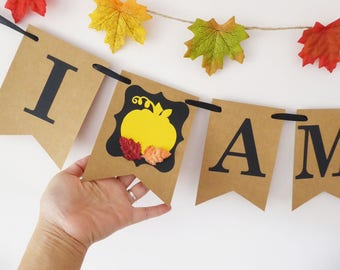 I am one bunting banner first birthday pumpkin decor, autumn birthday party, Cake smash photo prop