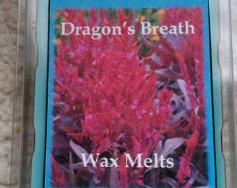Dragon's Breath Scented Wax Melts