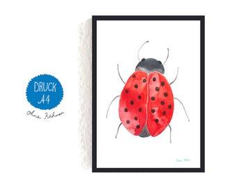 Art Print / small poster *ladybeetle / ladybug*