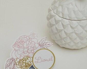 """Brand instead """"Camellia"""" elegant with soft tones"""