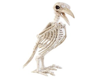 Skeleton Raven, Plastic Bird Crow Bones Halloween Decoration - hs269