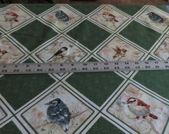 Birds - Garden Melodies by Giordano Studios for SPX Fabrics - cotton fabric - sold by the yard