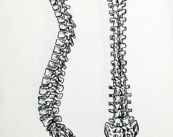 The Spine Print