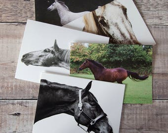Horse Greeting Cards - Pack of 5