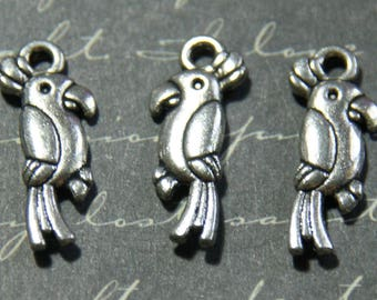 3 Silver 8x20mm metal Parrot charms