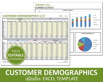 Customer Demographics Report - Printable and Editable | Excel Monthly Statistics Template | Customer Marketing | Instant Digital Download