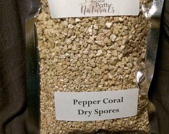 Wild Pepper Coral Mushroom Dry Spores Outdoor Cultivation  Mushroom seeds  Millions of spores per pack!  Grow at home easy