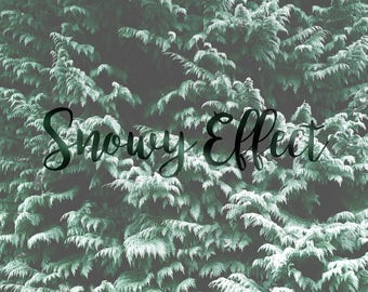 Snow Effect, Add Realistic Snow to Your Image, Photoshop Service, Winter Trees, Snowy Landscape, Photo Editing Service, Photo Editor