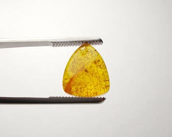 3,40 Cts. Natural Baltic Amber with insect Naturel ambre de la Baltique ナチュラルバルト琥珀 Ámbar Báltico natural Loose Gemstones Ambra Naturale