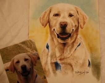 Personalized portrait of a dog-cat portrait ritratto tramite foto