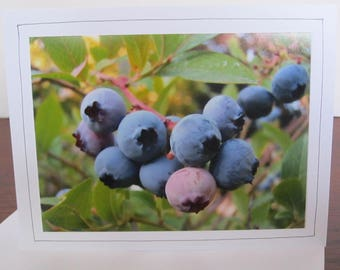 Photo Greeting Card   Handmade Card   Photo Note Card   Original Photography   Blueberries