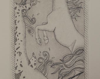 Evolution of the Unicorn - Etching Intaglio Print