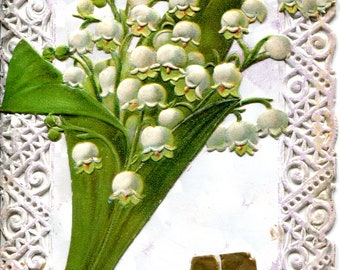Lily of the valley and paper lace