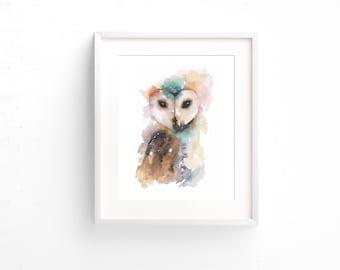 Framed Owl Watercolour Print