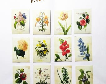 Stickers  Paper Adhesive Craft Scrapbooking DIY Agenda Decoration: Choose your favourite patterns!