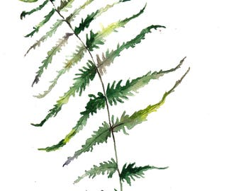 printable Fern,printable botany,printable watercolor,print in the living room,nursery,print green,print to the kitchen,instant download,JPEG