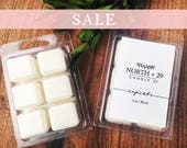 CUPCAKE Wax Melts - Scented wax cubes - Soy wax melts - Soy wax tarts - Wax cubes - Vendor Wax - Cupcake - Birthday gift - Gift for Her