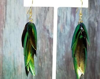 Jewel Beetle Earrings - Sustainable Dangle Boho Earrings  - Iridescent Statement Earrings - Valentines Day Gift- Lightweight Earrings