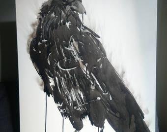 Raven Indian ink