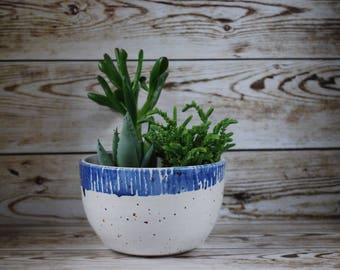Jetty - cobalt blue and white ceramic planter, plant pot, interior, pottery