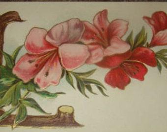Vintage Fmbossed Floral Postcard (Letter L)