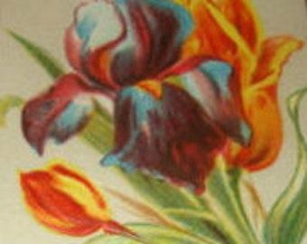 Vintage Floral Postcard (Iris)