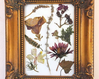 original pressed flower art vintage gold framewild flower art framed