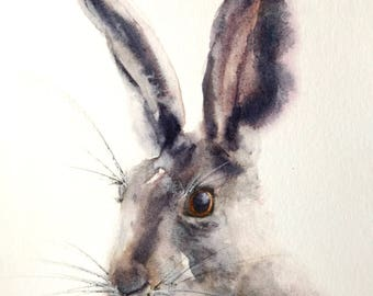 Hare Painting, Watercolour Hare, Hare Art, Giclée print, Wildlife Watercolour