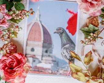 ITALY FLORENCE PHOTOGRAPHY A4 Print Duomo Florence Pigeon