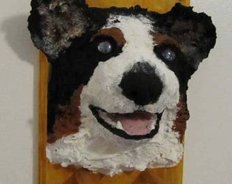 Bernese Mountain Dog Leash holder