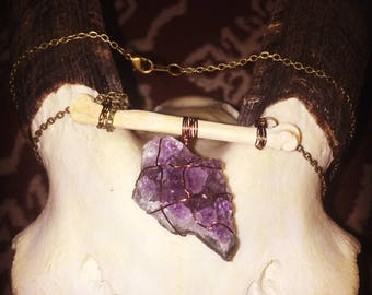 The Coyote and the Amethyst necklace