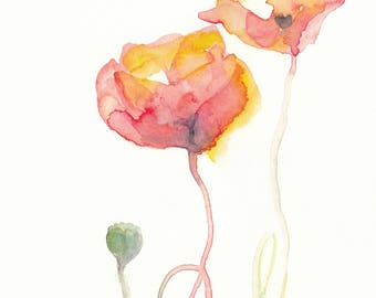 Poppies flower watercolour painting. Print