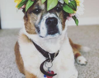 Dog Flower Crown - Dog Flower Collar