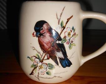 Stunning birds little mug