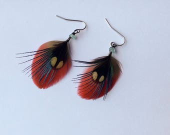 Cruelty Free Macaw Parrot Feather Earrings - Small Earrings - Bohemian Jewellery Natural
