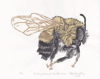 Rusty Pached Bumble Bee Linocut Print - Bombus affinis - Endangered Bumblebee Lino Block Print on Japanese Papers
