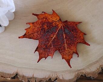 Maple Leaf Brooch Copper, Hair PIn, Sugar Maple Leaf Pin, Real Leaf, Hat Pin, Copper Leaf, BROOCH57
