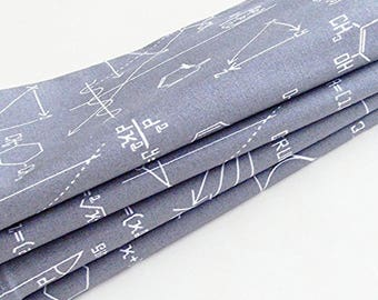 Science & Math Cotton Napkins / Set of 6 / Scientific and Mathematical Equations / Eco-Friendly Gift Under 75