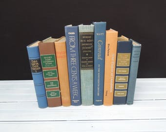 Book Decor Blue Peach Toned Books - Colorful Bookshelf - Books for Decor - Book Stack - Vintage Home Decor - Books Lovers Gift